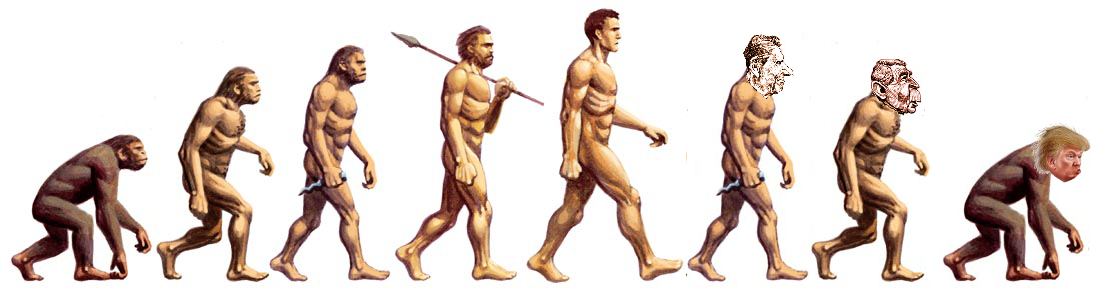 Ascent and descent of man